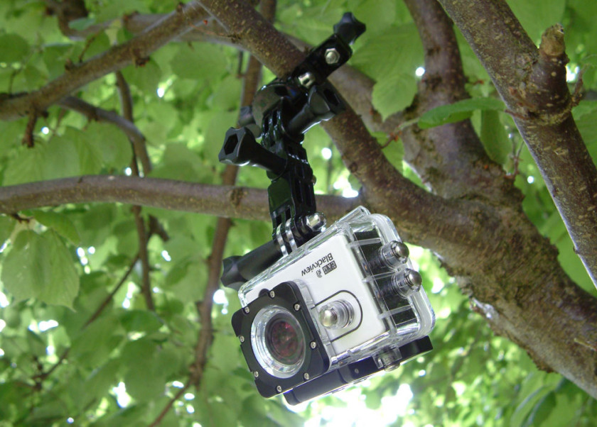 The BlackView Hero 2 mounted on to a hazel tree with the included accessories
