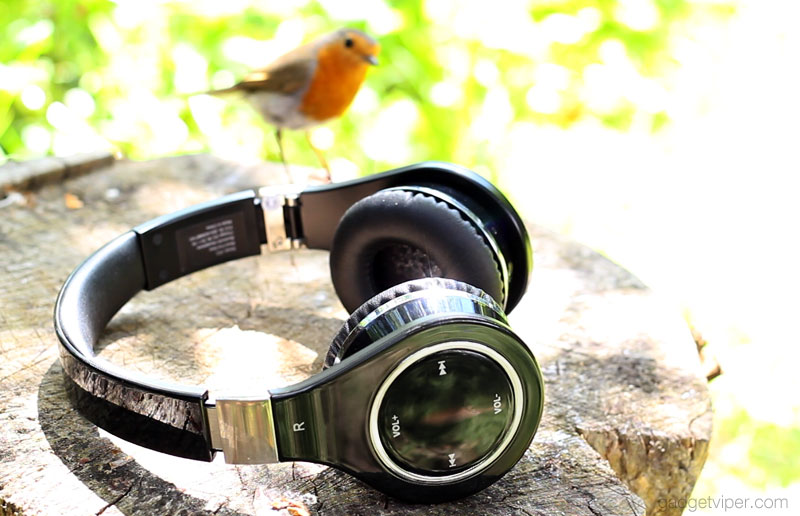 The Mixcder Bluetooth headphones being observed by a Robin
